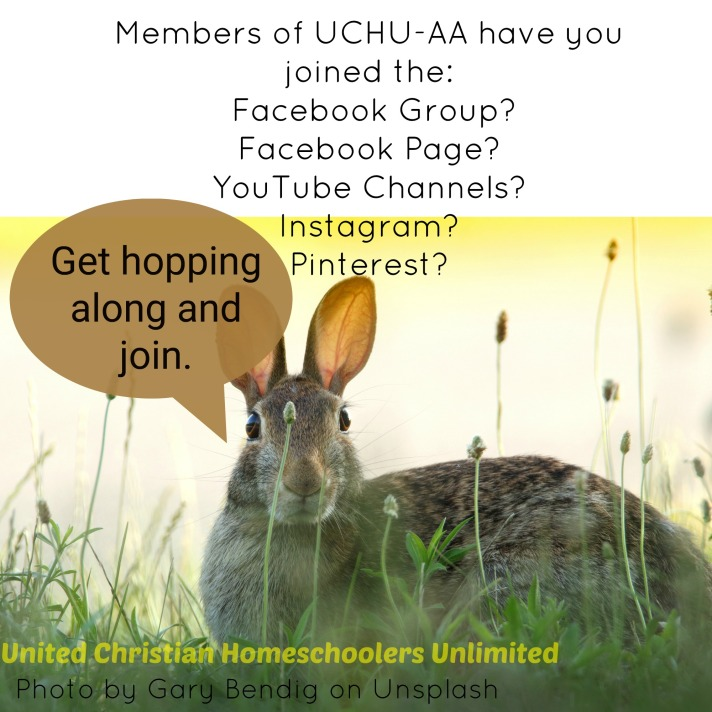 UCHU-AA Get hopping on social media